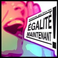 Manifestation pour l'Egalité – Voeux du Président de la République – MC2 – Mercredi 23 janvier 2013