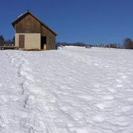 Randonnée Raquettes Plateau du Sornin – Rando's Rhône-Alpes – Dimanche 17 mars 2013