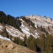 Randonnée Roc d'Arguille – Rando's Rhône-Alpes – Dimanche 21 avril 2013