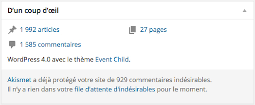 GG-Activite-Tableau-de-Bord-WordPress-081114